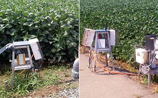 地域基盤に立脚した地下水位管理システムの構築を基幹とした大豆の高品質多収生産技術の開発