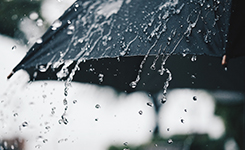 気象観測分野