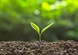 土壌水分センサ