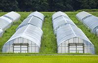 農業用ビニルハウスの自動開閉
